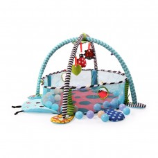 Moni Activity Gym Ladybird