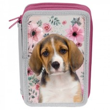 PASO School pencil case with two zippers Paso Dog